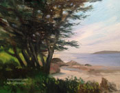 Carmel Bay cypress miniature oil painting