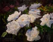 Huntington Roses - Class Act Floribunda flowers 16 x 20