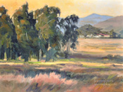 San Luis Obispo Los Osos Valley Oil Painting - Eucalyptus Sunset Central Coast Oil Painting