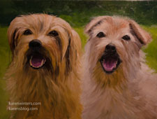 Norfolk Terrier Pet Portrait Jack and Lucy