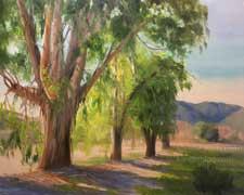 King Gillette Ranch eucalyptus Malibu