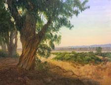 Morro Bay Eucalyptus Oil Painting California Central Coast Impressionist