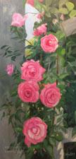 Pink Rose Trellis Huntington Rose Gardens