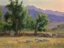Sheltered by the Sierra Sheep Grazing in Bishop oil painting