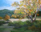 Blustery Day - Eaton Canyon sycamore oil painting