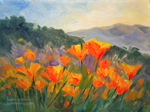 California poppy parade miniature oil painting 6 x 8 inches by California landscape painter karen Winters