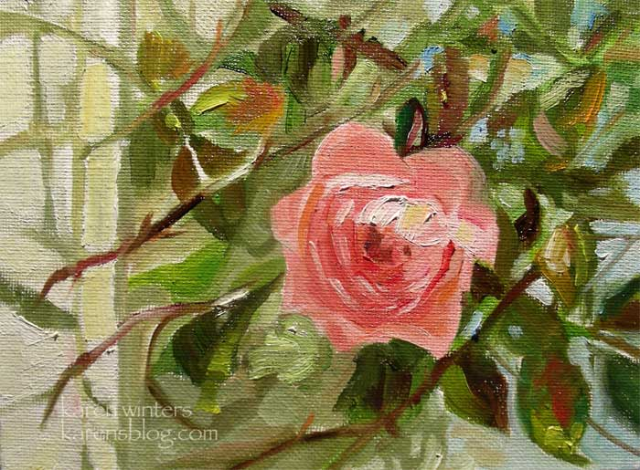 climbing pink rose huntington gardens oil painting 5 x 7 inches