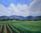 Edna Valley Vineyard oil painting