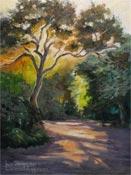 Descanso Gardens Oak Pathway