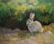 Hello Little Cottontail Rabbit Bunny oil painting