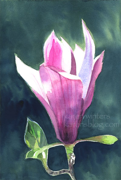 Magnolia Glow Tulip Tree Magnolia watercolor painting