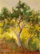 Malibu pine tree oil painting