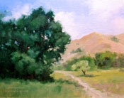 Oak Valley Conejo Valley Agoura Cheseboro Park painting