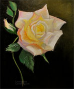 Peace Rose Oil Painting