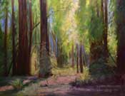Redwood Grove Oil Painting - Redwood Cathedral Armstrong Redwoods Oil painting by Karen Winters