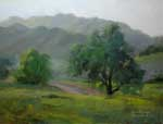 Oaks by a Country Road - Las Virgenes Canyon