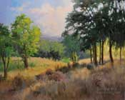 The Sheltering Grove Paso Robles Central Coast California oil painting landscape by Karen Winters