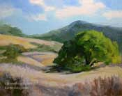 Summertime oak tree landscape golden rolling hills California oil painting