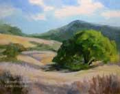 Summertime oak tree landscape golden rolling hills California oil painting