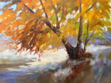 Sycamore Dazzle landscape California oil painting