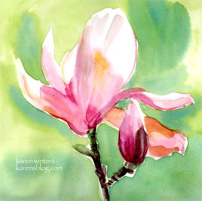 Tulip Magnolia watercolor painting