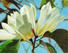 White Magnolias Botanical Painting Huntington Gardens