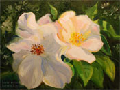 Sally Holmes White Roses Oil Painting